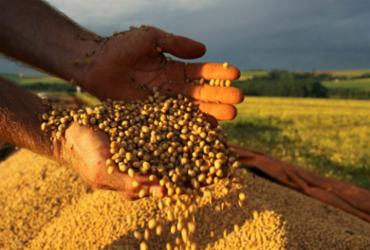 Oeste produziu 6,027 mi de toneladas de soja em 2020 | Foto: Jonas Oliveira | ANPr | Divulgação - Jonas Oliveira | ANPr | Divulgação