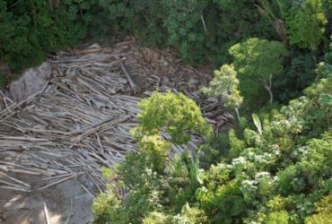 Governo demite chefe de monitoramento do Inpe após alta no desmatamento | Agência Brasil