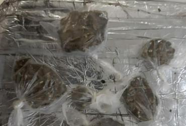 Falso ambulante é flagrado em coletivo com maconha dentro de isopor | Divulgação | SSP