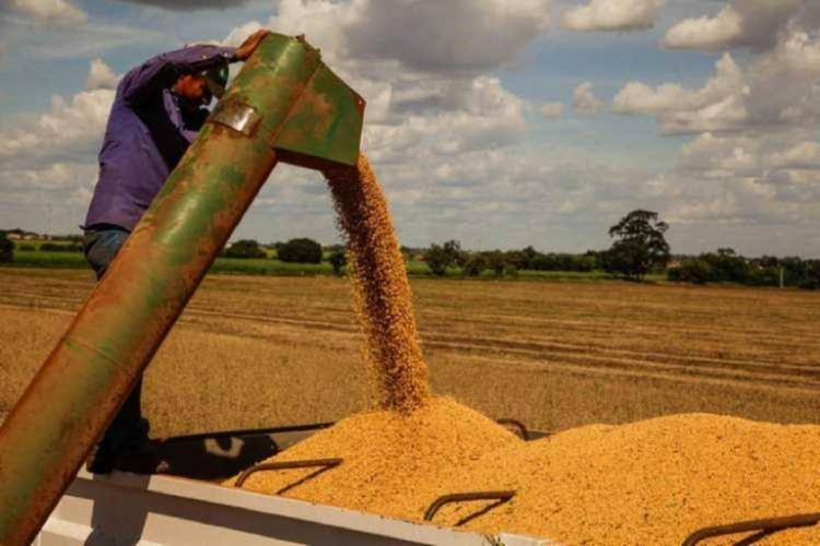 Recuo nas vendas externas do agro já era esperado   Foto: Divulgação   Adab - Foto: Ascom   Adab