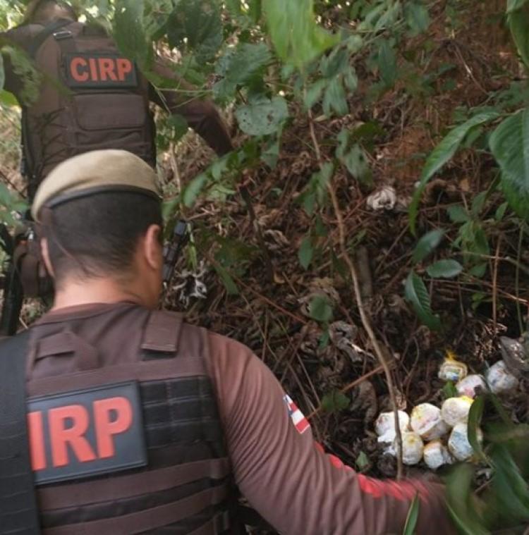 Ação foi iniciada após policiais notarem a frequência na tentativa de entrada das drogas nos presídios   Foto: Divulgação   SSP-BA - Foto: Divulgação   SSP-BA