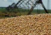 Estimativa para julho é de safra com 250,5 milhões de toneladas, diz IBGE | Foto: