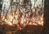 Bombeiros combatem fogo na Serra dos Órgãos | Divulgação | Parnaso