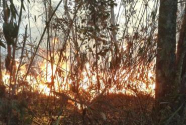 Bombeiros combatem fogo na Serra dos Órgãos pelo terceiro dia seguido | Divulgação | Parnaso