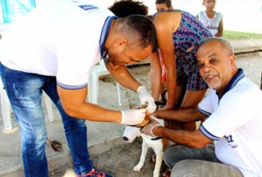 Campanha de vacinação animal terá sistema drive-thru em Salvador | Divulgação | Secom