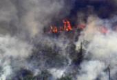 AGU cobra na Justiça R$ 893 milhões de desmatadores da Amazônia | Foto: Carl de Souza | AFP