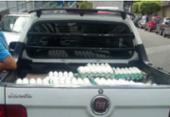 Bahia bate recorde na produção de ovos no segundo trimestre do ano | Foto: Foto: Divulgação