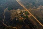 Articulação inédita quer tornar economia brasileira mais verde | Foto: AFP