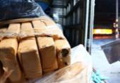 Três toneladas de drogas apreendidas em Salvador e RMS são incineradas | Foto: Divulgação | SSP-BA
