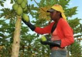 Obra enfoca o Brasil rural esquecido que guarda relações escravagistas | Foto: Reprodução
