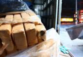Drogas apreendidas em Salvador e RMS são incineradas | Divulgação | SSP-BA