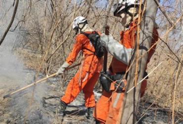 Bombeiros combatem novo foco de incêndio em Barra