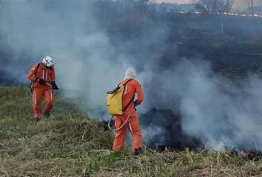 Incêndio em Barra próximo de controle | Divulgação