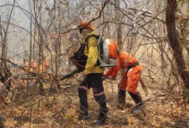Parte crítica de incêndio em Barra está praticamente controlada, diz Bombeiros