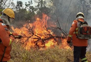 Área de proteção ambiental do Palácio do Jaburu é atingida por incêndio   Divulgação   Corpo de Bombeiros