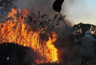 Incêndios: Governo Federal reconhece situação de emergência em Mato Grosso do Sul   Valter Campanato   Agência Brasil