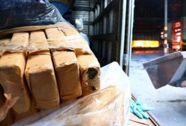 Três toneladas de drogas apreendidas em Salvador e RMS são incineradas | Divulgação | SSP-BA