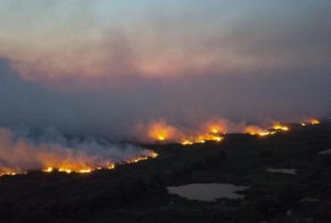 Investigação da PF revela que incêndio no Pantanal começou em grandes fazendas   Divulgação   Secom MT