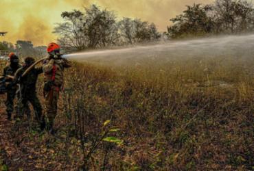 Mato Grosso pede ajuda da Força Nacional no combate a incêndios  