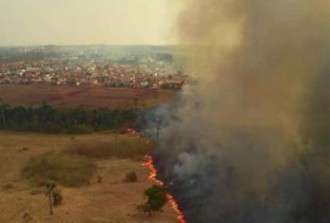 Parlamentares visitam áreas queimadas no Pantanal | Mayke Toscano | Secom-MT