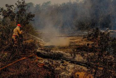 Comissão quer convocar Salles para falar sobre ações no Pantanal |