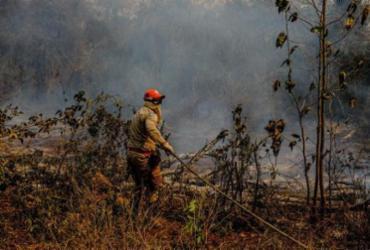 Com queimadas no Pantanal, deputados sugerem votação de propostas ambientais | Mayke Toscano | Secom MT