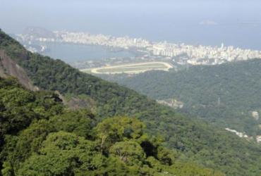 Petrobras refloresta área de Mata Atlântica no polo de gás de Itaboraí | Tânia Rêgo | Agência Brasil