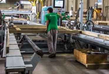 Tenda quer expandir atuação no Brasil com imóveis feitos de madeira | Divulgação | Tecverde