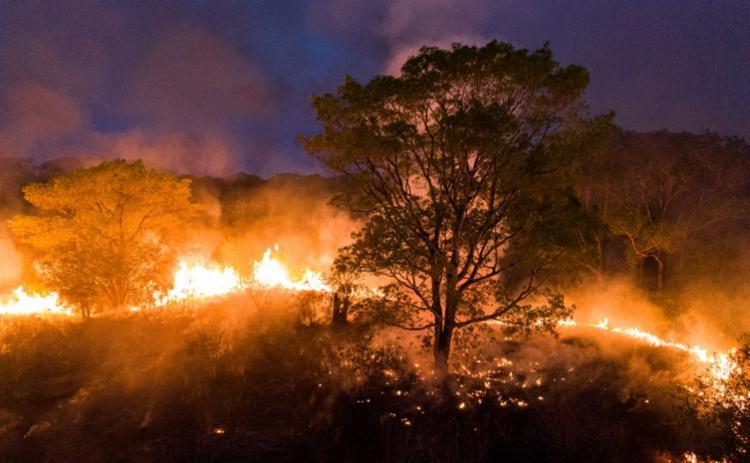 Foram registrados 14.489 focos de incêndio na região, entre janeiro e este domingo   Foto: Ibere Perisse   AFP - Foto: Ibere Perisse   AFP