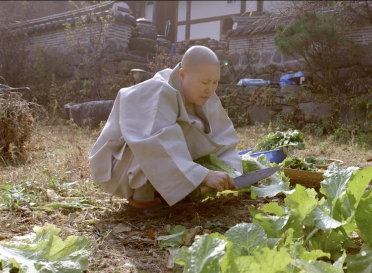 Mostra começa com exibição do filme coreano 'Sabores do Templo' - Foto: Divulgação