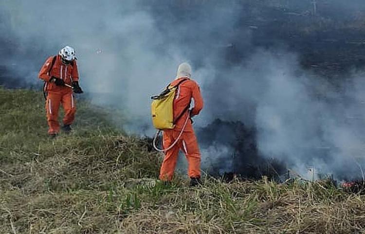 Estima-se que o fogo já destruiu mais de mil hectares | Foto: Divulgação - Foto: Divulgação