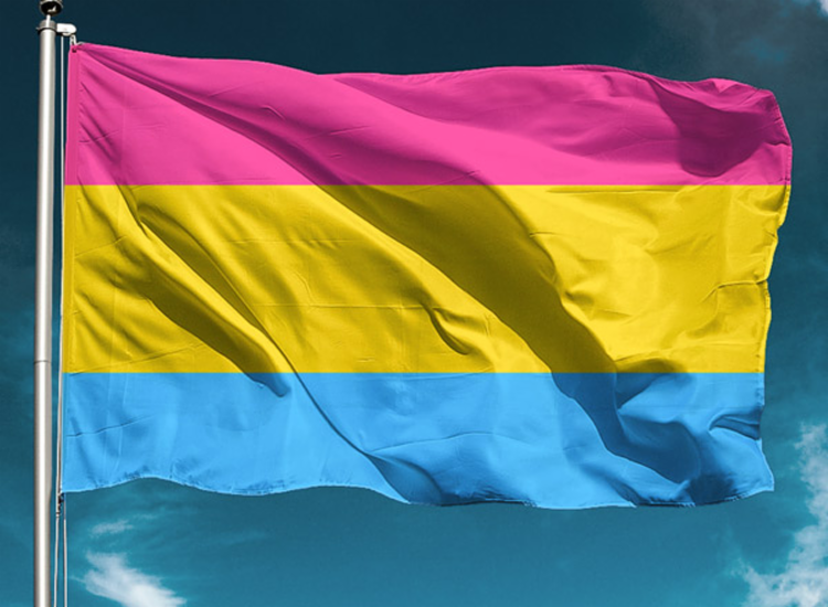 Bandeira que representa o movimento pansexual | Foto: Reprodução | Instagram - Foto: Reprodução | Instagram