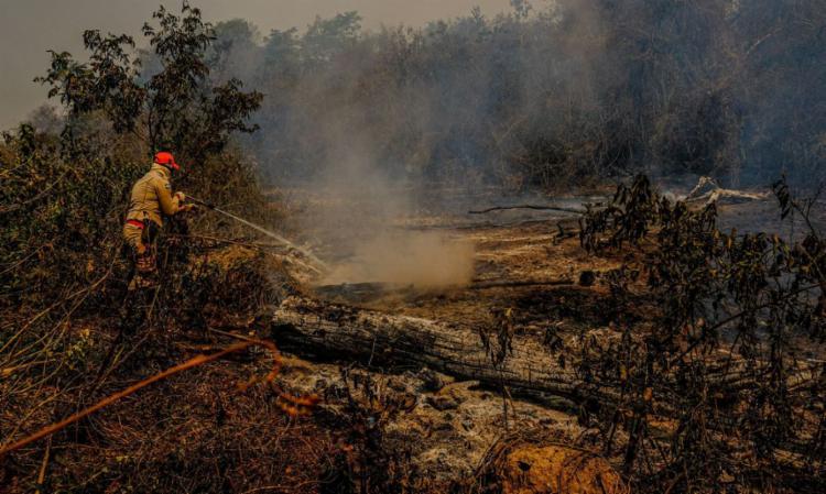 Câmara estuda estratégia contra queimadas em biomas | Foto: Mayke Toscano | Secom-MT - Foto: Mayke Toscano | Secom-MT