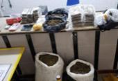 Dupla é atuada com 61 kg de maconha na Estrada do Coco | Foto: Foto: Divulgação | SSP