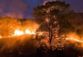 Incêndios continuam arrasando Amazônia e Pantanal | Foto: