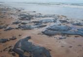 Comissão para monitorar poluição marítima é criada no Brasil | Foto: Arquivo | AFP