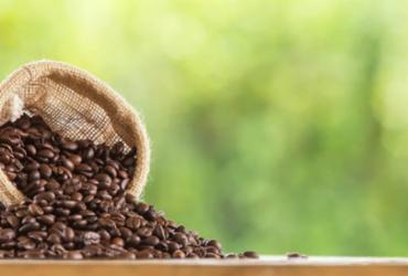 Com cooperativismo o café pode crescer na Bahia | Divulgação | Freepik