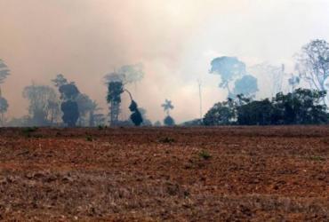 Amazônia registra maior acumulado de focos de incêndio em 10 anos, diz Inpe   João Laet   AFP