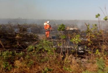 Bombeiros continuam no combate ao incêndio em Andaraí e Mucugê; Barra tem incêndio florestal extinto   Divulgação   Corpo de Bombeiros