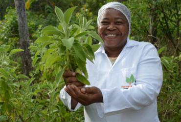 Projetos oferecem suporte para manutenção de comunidades quilombolas baianas |