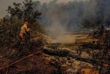 Governo autoriza que Exército atue por um mês em incêndios no pantanal   Divulgação   Secom-MT