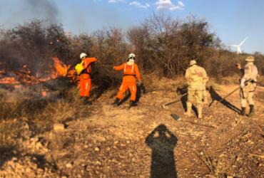 Incêndios em quatro cidades baianas são controlados pelos bombeiros   Divulgação   CBMBA