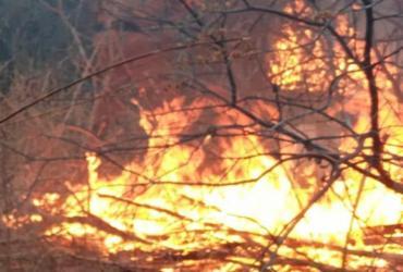 Incêndio florestal é extinto em Rio de Contas   Divulgação   CBMBA