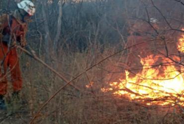Situação de emergência é decretada em 73 municípios atingidos por incêndios florestais   Divulgação   CBMBA