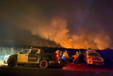 """""""Há fortes indícios que tenha sido iniciado por ação humana"""", diz superintendente do Ibama sobre incêndio na Chapada   Divulgação   Ibama"""