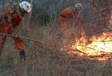 Incêndio em Morpará é debelado; bombeiros encontram novos focos em Barra   Divulgação   CBMBA