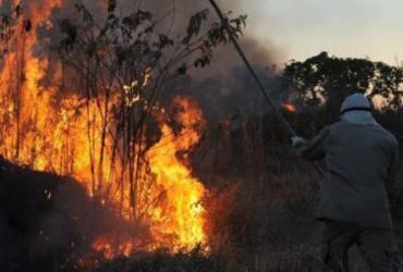 Chefe do centro de combate a incêndios do Ibama deixa cargo um mês após nomeação   Valter Campanato   Agência Brasil