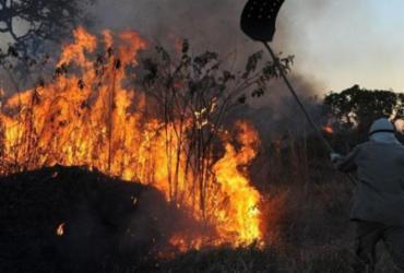 Economia anuncia R$ 60 mi para Meio Ambiente combater queimadas |