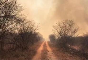 Incêndio florestal é extinto nos limites entre Morpará e Xique-Xique   Divulgação   CBMBA