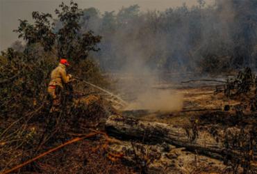 Fogo já destruiu 3,461 milhões de hectares do Pantanal  